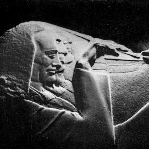 Фотовыставка «Дмитрий Цаплин» в Калининском историко-краеведческом музее.
