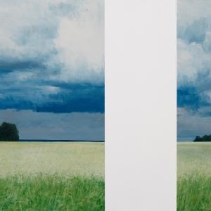 Первая биеннале современного искусства в Ярославле