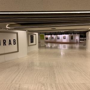 Выставка произведений Зураба Церетели во Дворце Наций (Женева)