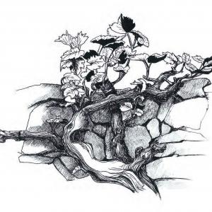 С.В. Цигаль. Из серии «Лоза». Шелкография. 70х100. 2009
