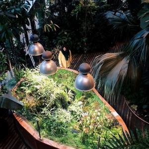 XXIX-е Алпатовские чтения. «Садово-парковое искусство Востока и Запада. Диалог и формы идентичности»